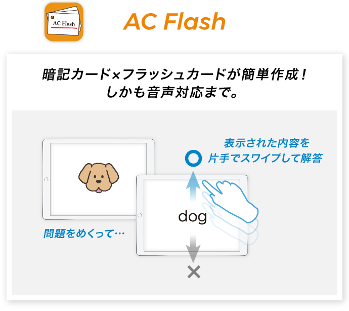 図:AC Flash