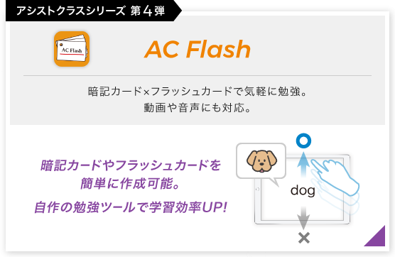 画像:AC Flash